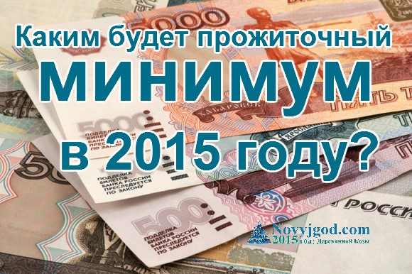 Каким будет прожиточный минимум в 2015 году?