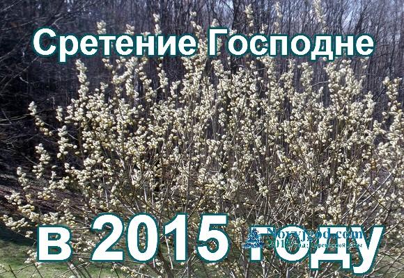 Сретение Господне 2015