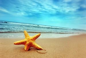 Места где отдохнуть летом на море